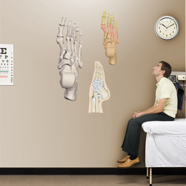 Posters voeten