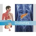 Zorgatlas Diabetes