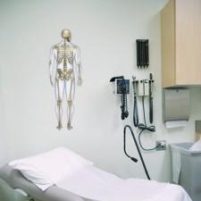 skelet poster medische anatomische poster menselijk lichaam 2