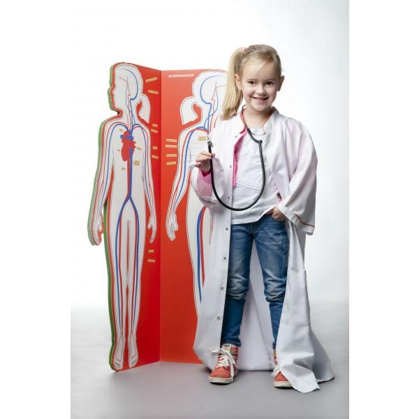 anatomische kinderatlas